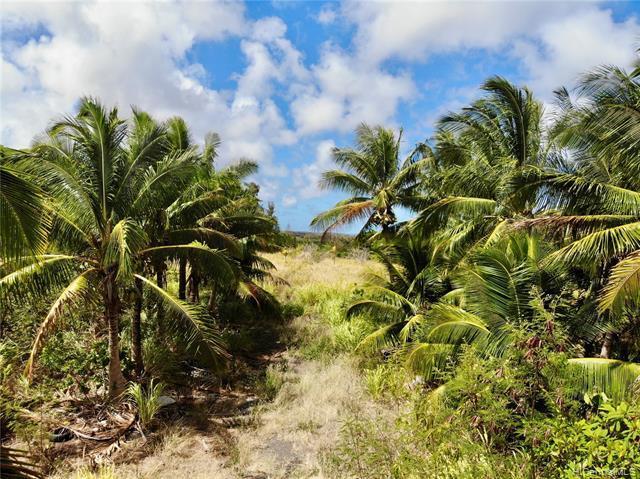 56-664 Kamehameha Hwy #2, Kahuku, HI, 96731