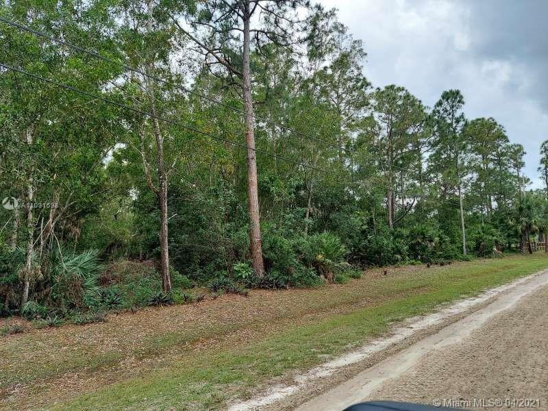 Build your dream home on one of the last vacant lots in quiet Jupiter Farms. Partially cleared, high