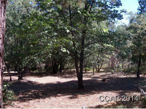 1043 Forest Meadows Dr, Murphys, CA, 95247