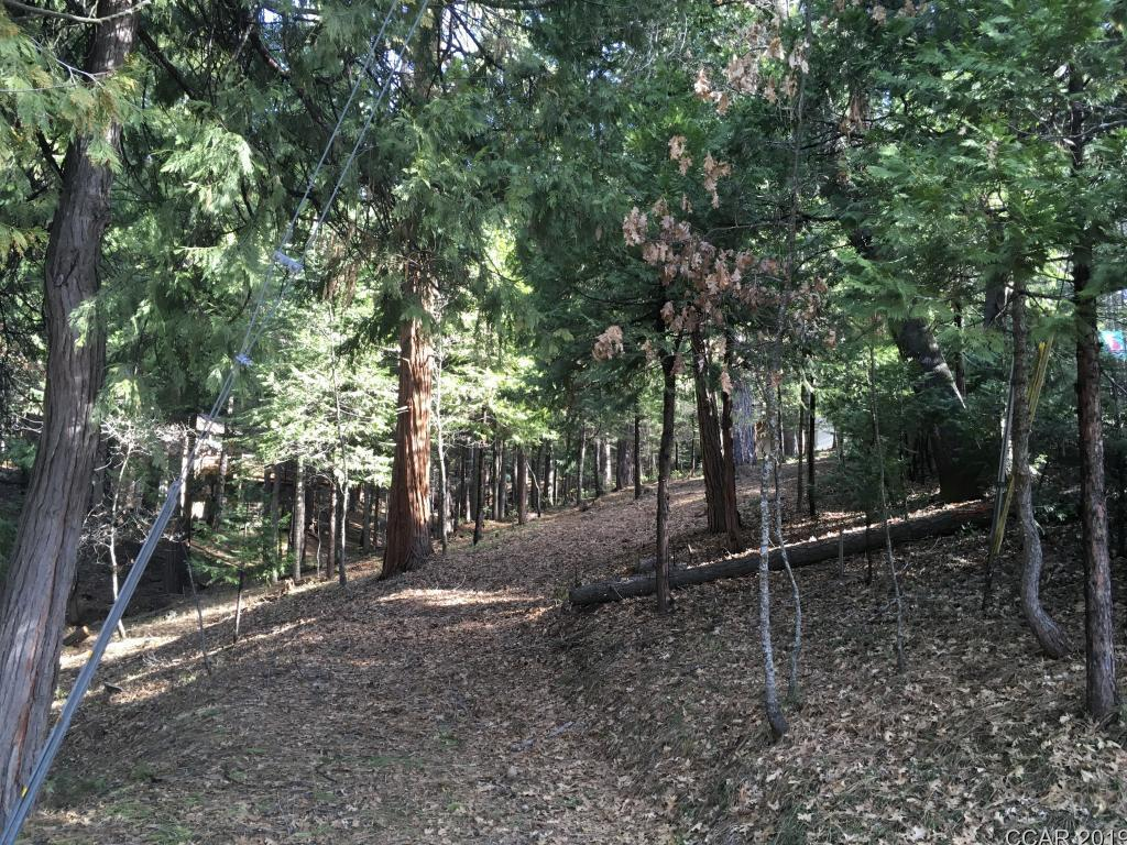 858 Meadow Dr, Arnold, CA, 95223