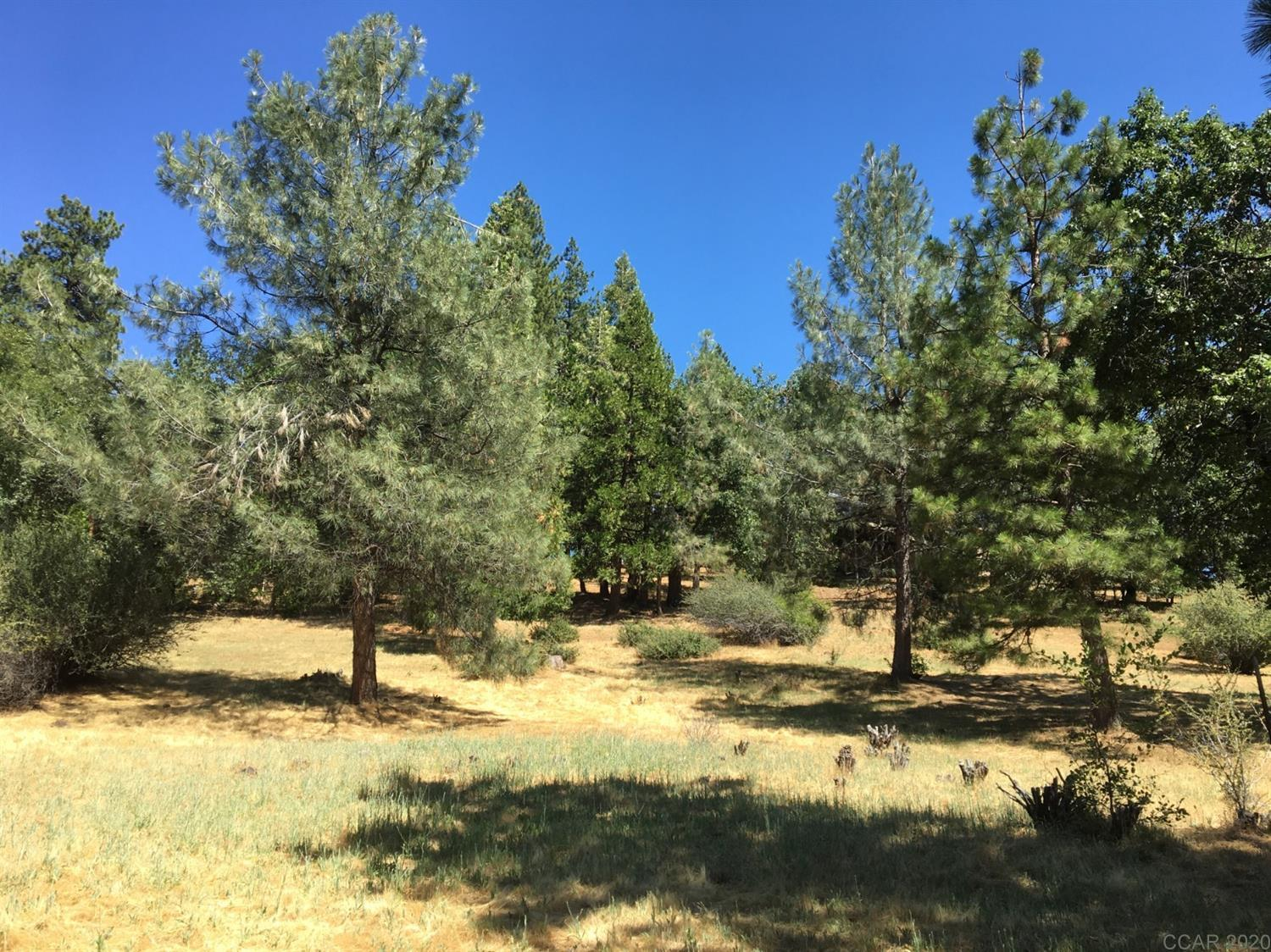 Water & Sewer included in price ($22,242 value)! This lot is located on a quiet street in the gated community of Forest Meadows. It's a great location to build your mountain dream home. Easy access to Hwy 4 and just minutes from downtown Murphys, wineries and golf (or a short drive to lakes & skiing). Amenities include: security gate/patrols, underground utilities, common area maintenance, snowplowing of main roads, clubhouse, 2 pools & parks, tennis/pickle-ball/boccee courts, playgrounds, dog park, walking/hiking trails...and so much more.