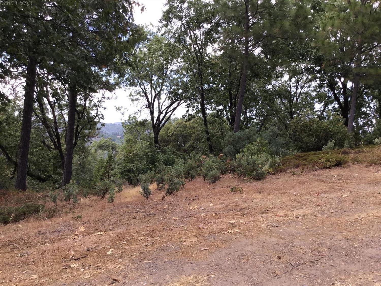 0 Forest Meadow Dr, Murphys, CA, 95247