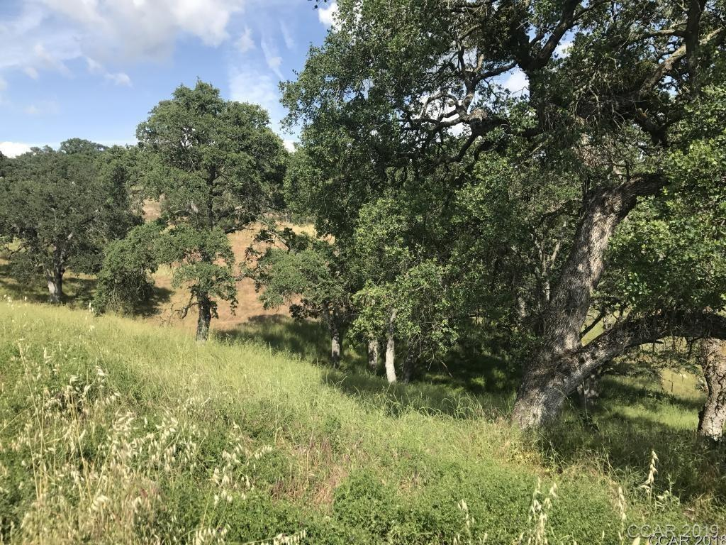Half acre lot in the heart of Valley Springs. Endless possibilities with this property, close to shopping and a short drive to Lake Camanche and New Hogan. Public water - needs to be hooked up. Electricity close by. Needs septic.