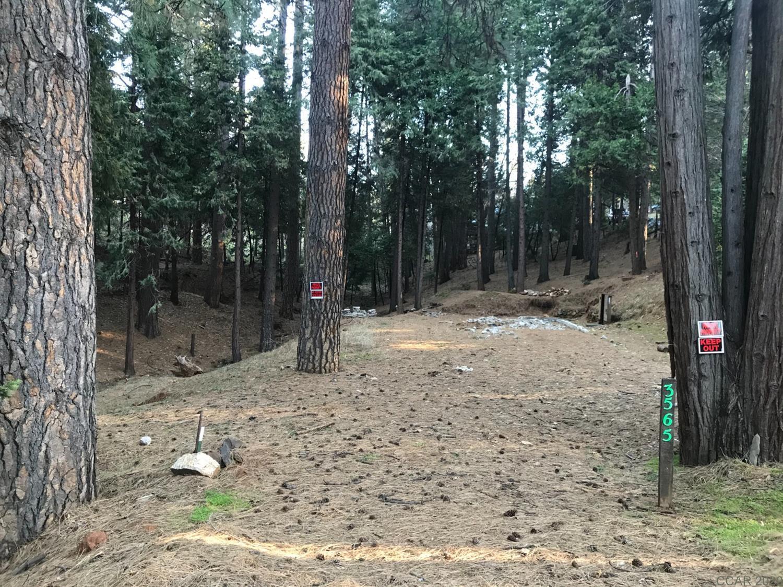3565 Cedar Vista Drive Dr, Murphys, CA, 95247