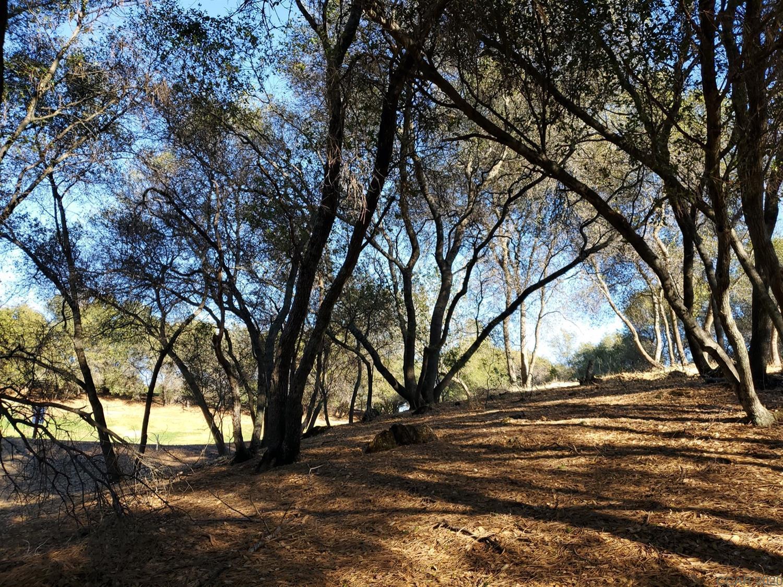 289 Blair Mine Road Rd, Angels Camp, CA, 95222